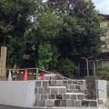 Photos: 13.10.22.東海寺大山墓地(北品川4丁目)