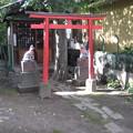 10.11.02.南品川諏方神社(南品川)茶ノ木稲荷社