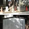 Photos: 10.11.02.品川寺(南品川)庚申塔 ・銀杏