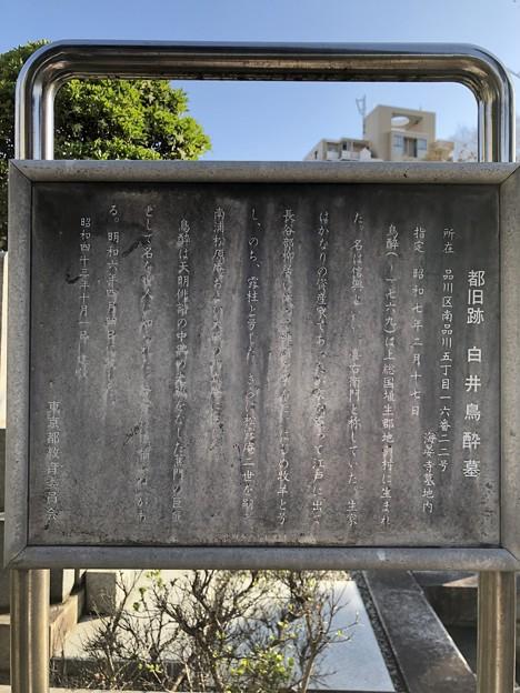 18.03.22.海晏寺(南品川)混沌未整理地?