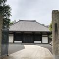 Photos: 海晏寺本堂(南品川)