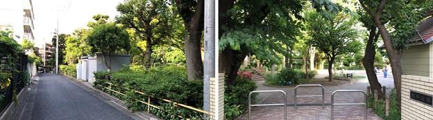 Photos: 前 仙台藩伊達家 ・後 鯖江藩間部家下屋敷跡(品川区営 大井公園)