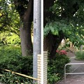 前 仙台藩伊達家 ・後 鯖江藩間部家下屋敷跡(品川区営 大井公園)