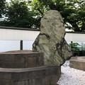 嶋津常候之墓(品川区営 大井公園)