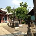 Photos: 13.07.10.鮫洲八幡神社(品川区東大井)
