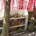 12.04.18.妙厳寺 豊川稲荷東京別院(港区元赤坂)霊狐塚