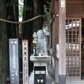 妙厳寺 豊川稲荷東京別院(港区元赤坂1丁目)大黒天
