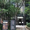 麺屋 虎杖 日本橋(中央区)
