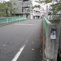 Photos: 面影橋~宿坂(新宿区~豊島区)