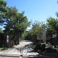 Photos: 南蔵院(豊島区高田)