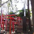 Photos: 12.04.04.法明寺飛地境内(豊島区雑司が谷)武芳稲荷社