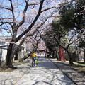 Photos: 12.04.04.法明寺(豊島区)参道