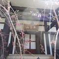 12.04.04.法明寺 塔頭(豊島区)平等山観静院
