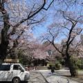 Photos: 12.04.04.法明寺(豊島区)