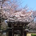 Photos: 12.04.04.法明寺(豊島区)山門