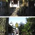 Photos: 大鳥神社 (豊島区雑司が谷)稲荷社