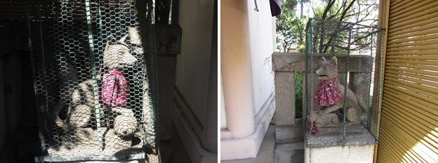 12.04.04.大鳥神社 (豊島区雑司が谷)稲荷社