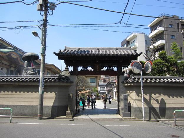 Photos: 真性寺(豊島区巣鴨)