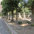 Photos: 11.04.14.染井霊園(豊島区駒込)岩崎家分家墓所