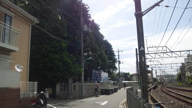 12.05.16.沼袋氷川神社(中野区)