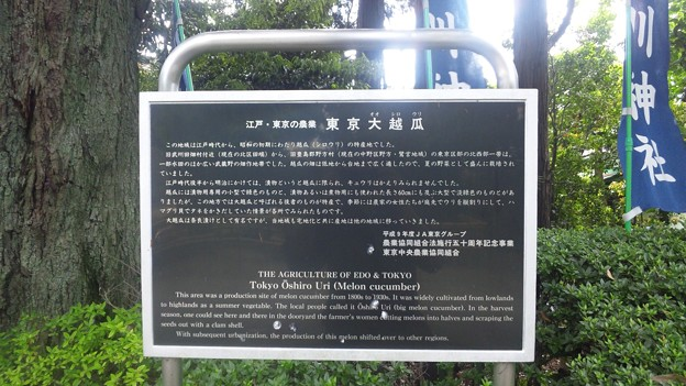 Photos: 沼袋氷川神社(中野区)