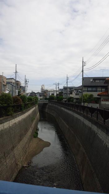 12.05.16.江古田公園(中野区松が丘)新開橋より北