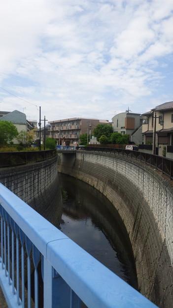 江古田公園(中野区松が丘)江古田橋より南