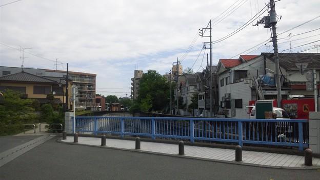 江古田公園(中野区松が丘)江古田橋より北東