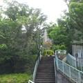 江古田公園(中野区松が丘)江古田原古戦場跡