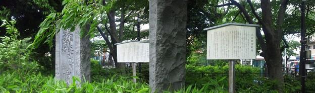 江古田公園(中野区松が丘)江古田古戦場碑