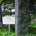 Photos: 江古田公園(中野区松が丘)江古田古戦場碑