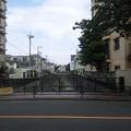 Photos: 江古田公園(中野区松が丘)江古田大橋上より北