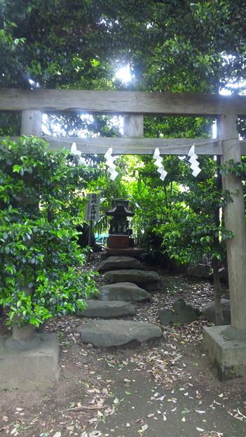江古田氷川神社(中野区江古田)鎮魂霊神社