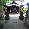 江古田氷川神社(中野区江古田)阿吽狛犬