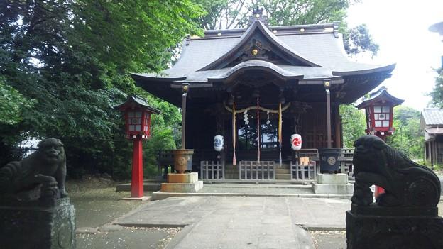 江古田氷川神社(中野区江古田)吽阿狛犬
