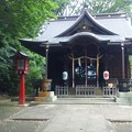 Photos: 江古田氷川神社(中野区江古田)吽阿狛犬