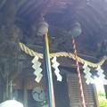 Photos: 江古田氷川神社(中野区江古田)
