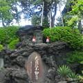 東福寺(中野区江古田)大蔵院不動尊