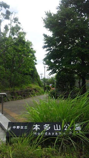 Photos: 本多山公園(中野区江古田)