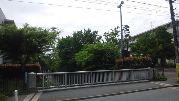 西原橋(中野区江古田)より東
