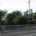 Photos: 西原橋(中野区江古田)より東