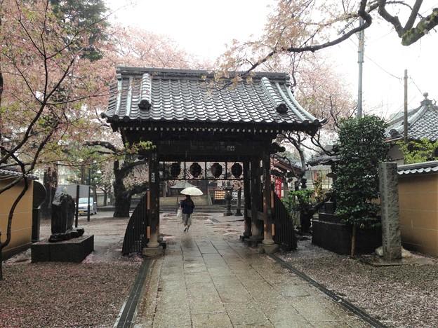 13.04.02.新井薬師(中野区新井)山門