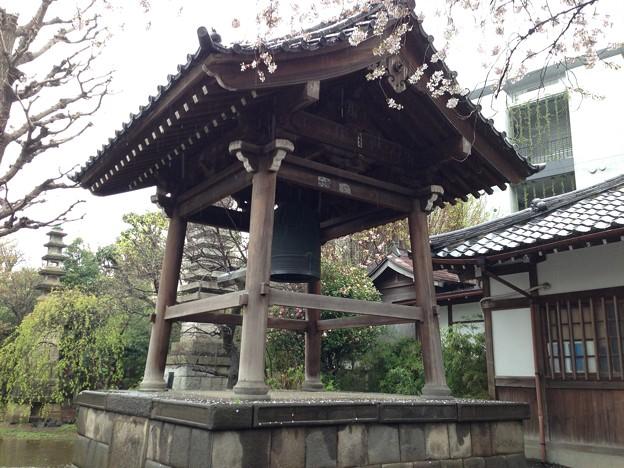 13.04.02.新井薬師(中野区新井)鐘楼