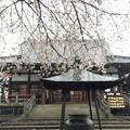 Photos: 13.04.02.新井薬師(中野区新井)瑠璃殿
