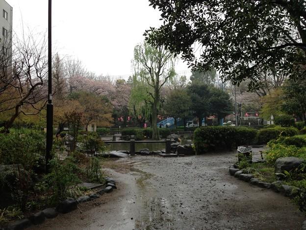 13.04.02.新井薬師公園(中野区新井)