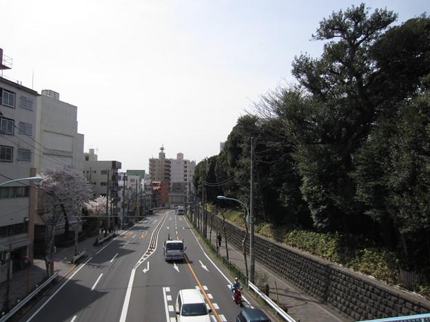 12.04.10.滝野川会館前歩道橋より(東京都北区)南