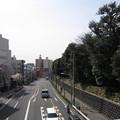 Photos: 12.04.10.滝野川会館前歩道橋より(東京都北区)南