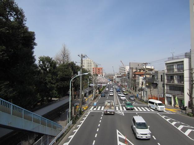 滝野川会館前歩道橋より(東京都北区)西