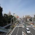 Photos: 滝野川会館前歩道橋より(東京都北区)西