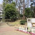 Photos: 御殿前遺跡/滝野川公園(東京都北区)